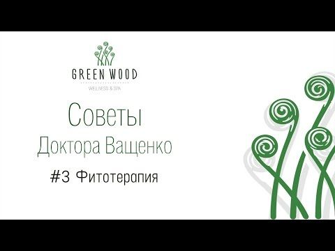 #3 Фитотерапия - YouTube