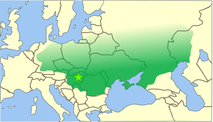 Empire of Attila the Hun, circa 450 AD (Borders are only approximate.) The empire was a loose collection of conquered peoples without the structure of a formal empire (like the Persian or Roman Empires).  Records of east and north borders of his empire are nearly non-existent. The star is an approximate location of the capital – either near ruins of the Roman city of Acquincum (today's Budapest), or a mobile 'wooden castle' which was in the Hungarian Great Plain, somewhere near the Tisza…