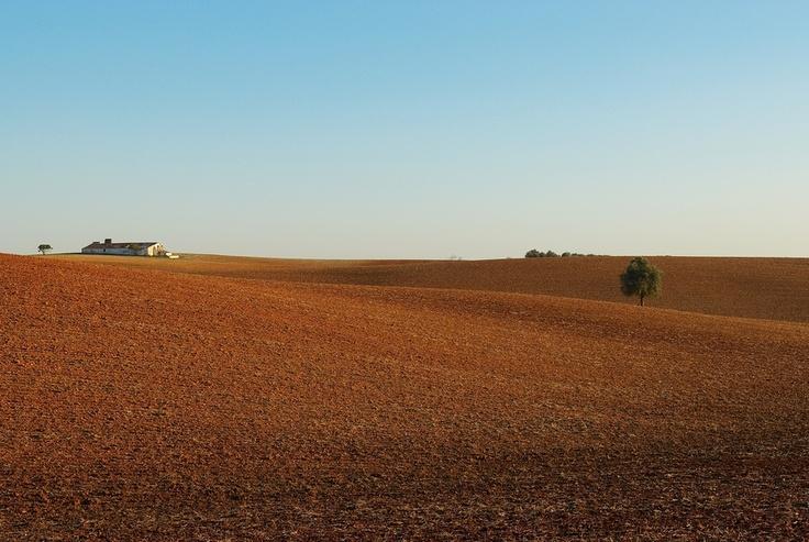 Landscape_08 by Pedro  Pinho, via 500px