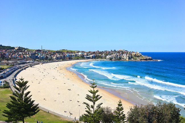 bondi beach - Google Search