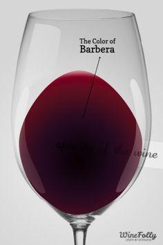 A Guide to Barbera Wine
