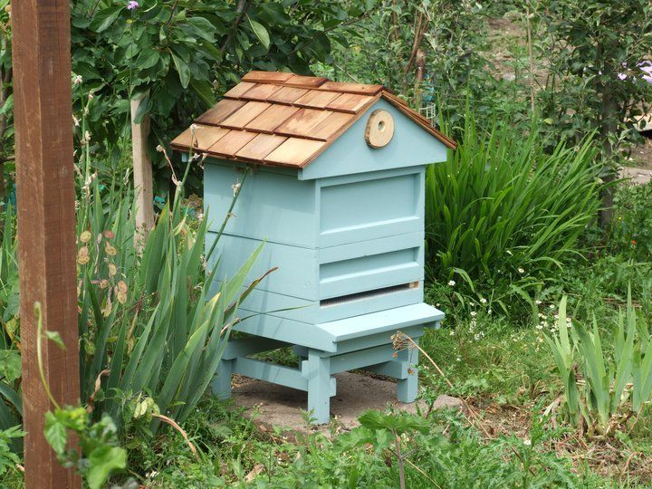painted bee hives - Bing Images