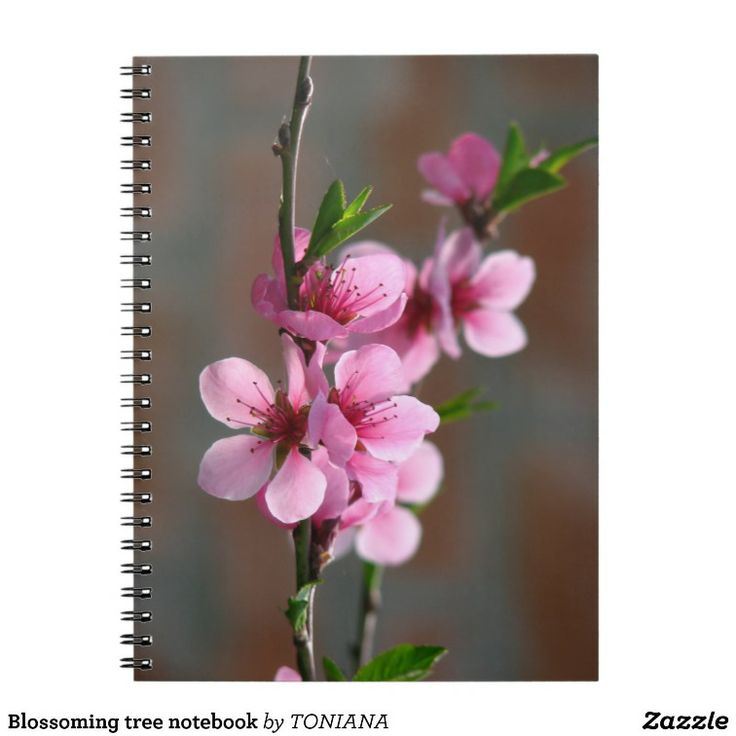 Blossoming tree notebook