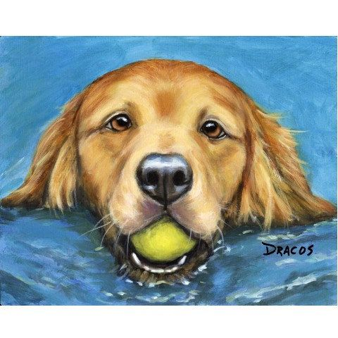 GOLDEN RETRIEVER SWIMMING WITH BALL  DOG ART PRINT FROM ORIGINAL PAINTING BY DOTTIE DRACOS MULTIPLE SIZES/STYLES AVAILABLE (Shipping price same on