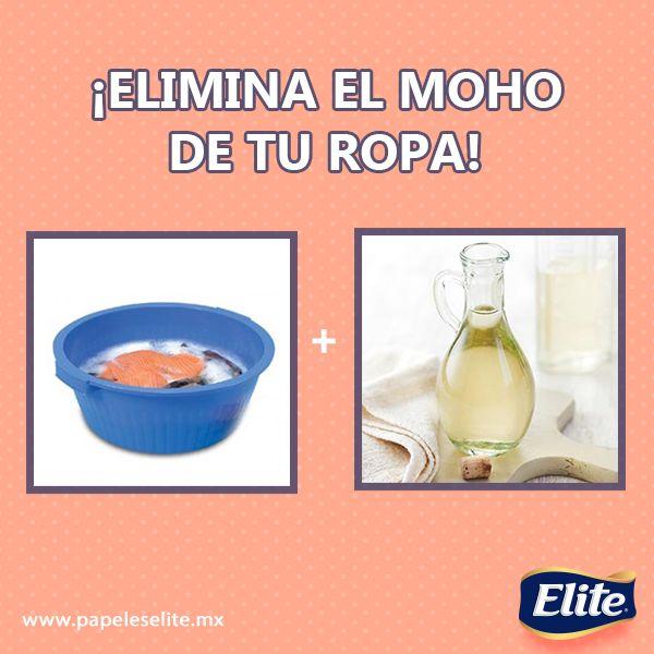 Elimina el moho de tu ropa en una tina a ade una taza de for Remedios para quitar el moho del bano