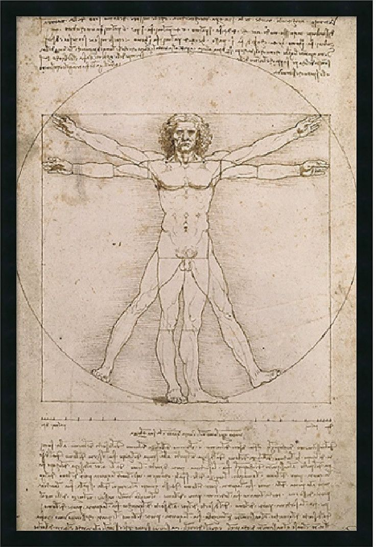 "0-028437>25x37"" Leonardo da Vinci Proportions of the Human Figure Vitruvian Man Framed Print"