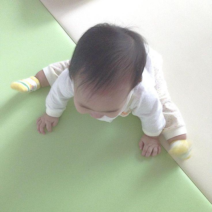 . 이제 앉아있기는 껌이야~!  . #육아 #딸둥이 #쌍둥이  #baby #あかちゃん # #twin #双子 #ふたご #そうし #아기 #bebé #niño #niña #발 #애기발 #もぞもぞ #알집매트  #8개월 #8개월아기