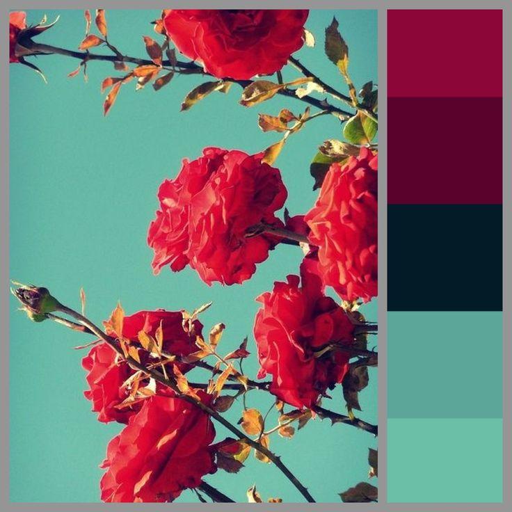 Theme Natural Edgy Makeup Color Scheme Colors Bright