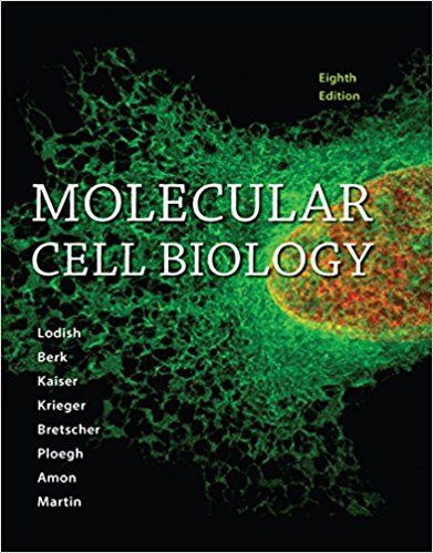 Molecular cell biology 8th edition harvey lodish pdf tetxbook molecular cell biology 8th edition harvey lodish pdf tetxbook pinterest cell biology and pdf fandeluxe