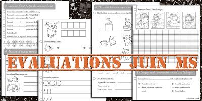 Evaluations MS juin.