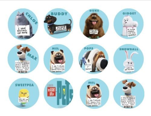 124 Best Images About Secret Life Of Pets Printables On
