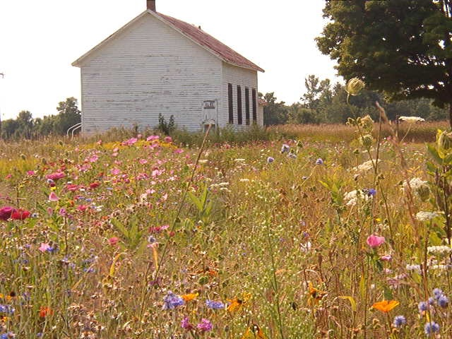 Field Of Flowers Wedding Michigan : Best images about old school house on the