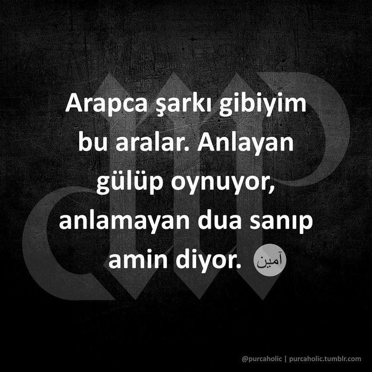 """104 Likes, 6 Comments - Murat Purç (@purcaholic) on Instagram: """"Arapca şarkı gibiyim bu aralar. Anlayan gülüp oynuyor, anlamayan dua sanıp amin diyor.  #arapca…"""""""