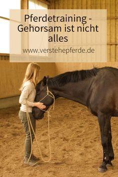 Horsemanship und Pferdetraining: Gehorsam ist nicht das Wichtigste, sondern die Beziehung zum Pferd.