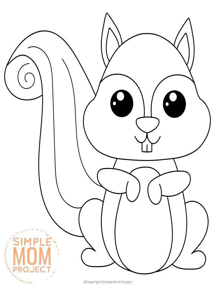 Free Printable Woodland Squirrel Coloring Page Squirrel Coloring Page Animal Coloring Books Animal Coloring Pages