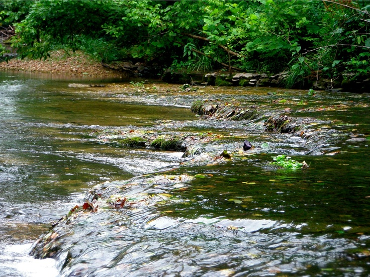 Buffalo Creek where each member of my family was baptized-and it was where we went swimming in the summer