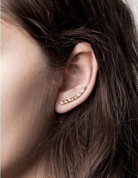 tusk ear pin: