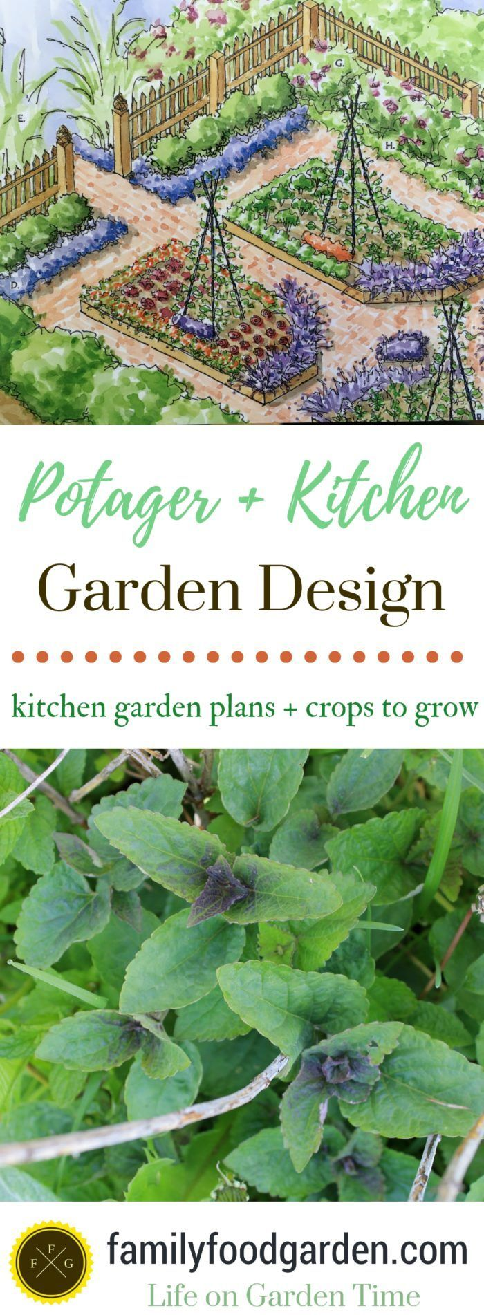 What to plant in a potager garden + kitchen garden design plans #gardenplans