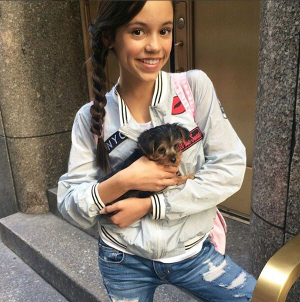 On Wednesday, June 15, 2016, Disney actress Jenna Ortega shared a super cute picture of her new dog. The Stuck in the Middle starlet is in New York working.