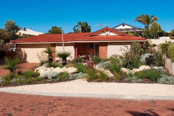 69 best My Garden Plants (Perth WA) images on Pinterest ...