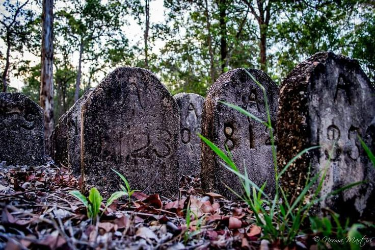 Goodna Cemetery by Norman Martin
