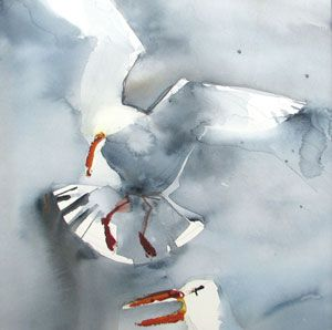 Lena Amstrand - Gull 1 - watercolors