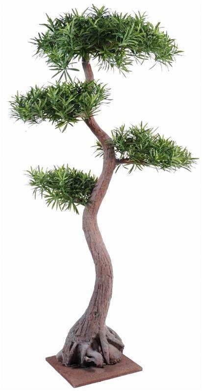 Podocarpus bonsai artificiel 160cm - vente en ligne d'arbres et plantes…