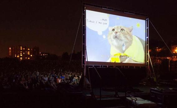Entertaining article on a curated film festival of online cat videos.