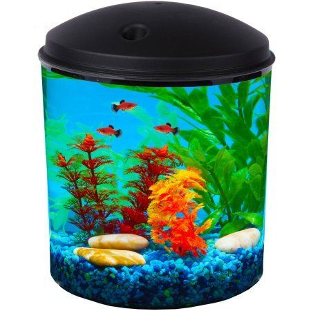 Try This!  Hawkeye 2 Gallon Aquarium Kit with Filter and LED Lighting