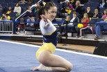 Michigan Gymnastics