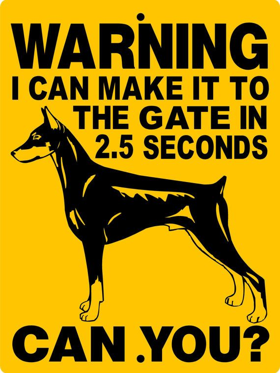 Doberman Pinscher Dog Sign 9x12 ALUMINUM by animalzrule on Etsy