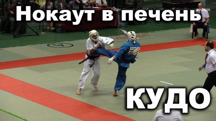 Нокаут, удар ногой в печень, Кудо, Чемпионат России 2016, финал, Пермин ...