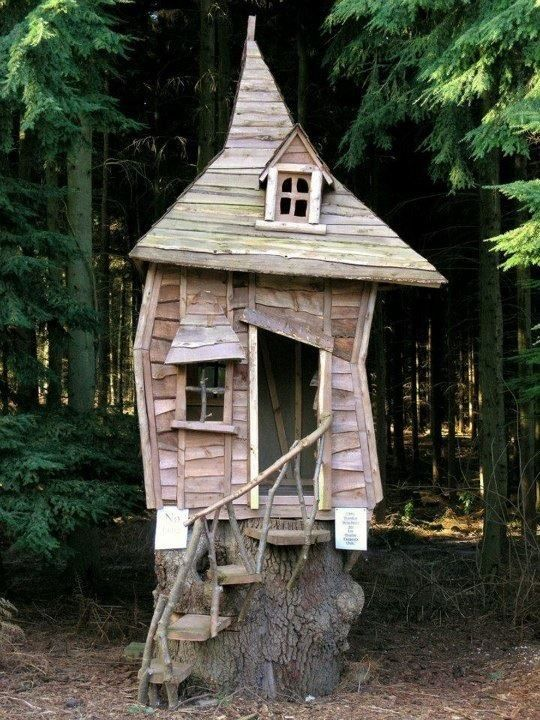 outdoor cat Home . ohhhhkay. this is the coolest.