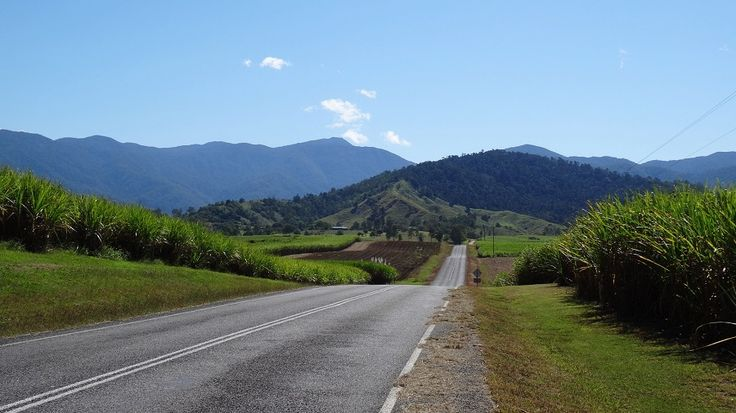 I never grow tired of the countryside! #FinchHatton #Queensland #Outdoors #Countryside #Drive