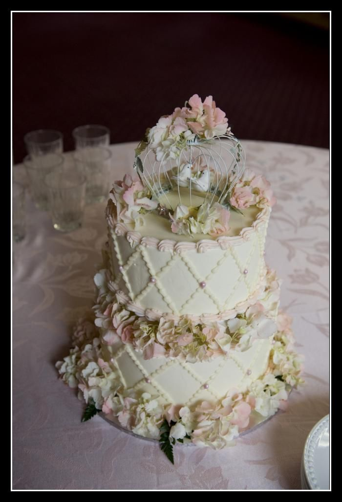 wedding cakes with birds on them image detail for bird cage wedding cake topper wedding 25982