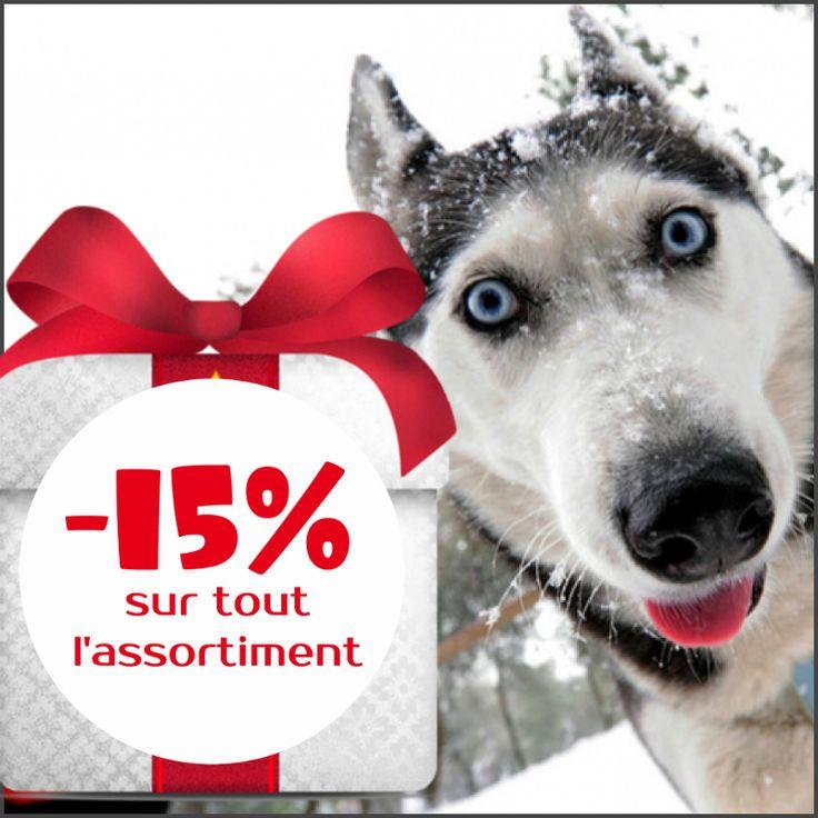 Choisissez un cadeau de Noël pour votre chien!! #Offrespéciale Fêtes de #Noël et du #NouvelAn sur tous les sites de marque #ForDogTrainers!! Jusqu'au 01-01-2017 notre boutique en ligne vous offre une #remise de 15% sur toute la gamme des #accessoirespourchiens!! #Colliers, #harnais, #laisses, #muselières, #jouets – dépêchez-vous d' acheter le meilleur cadeau pour votre compagnon fidèle! Rendez-vous sur www.fordogtrainers.fr et d'autres sites de notre marque! ->  @fordogtrainersf Pensez à…