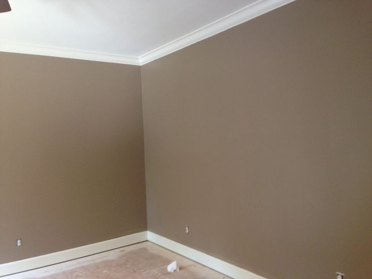 Benjamin moore alexandria beige new house pinterest for Beige wall paint colors
