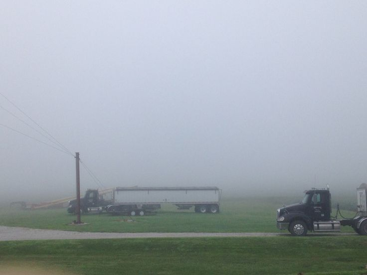 A foggy July morning.