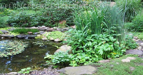 15 best the trees i like images on pinterest deciduous for Design of ash pond