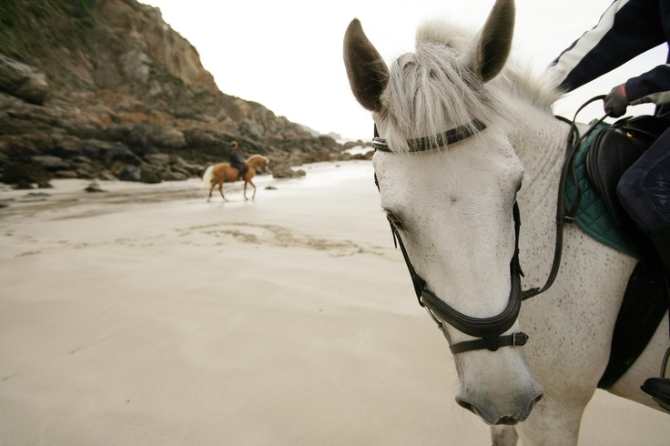 Horse riding at Petit Bot Bay on the South Coast of Guernsey