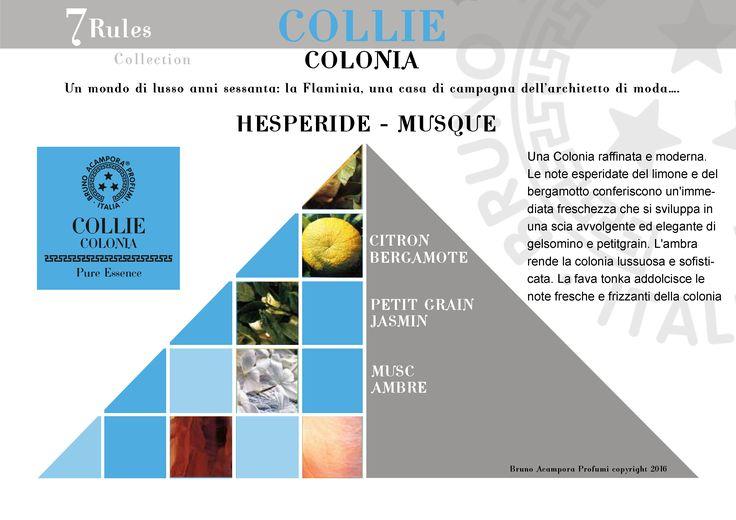 Collie - Pyramid  #newcollectione #7rules #pyramids #piramidi #olfactorypyramid #collie #brunoacamporaprofumi #brunoacampora