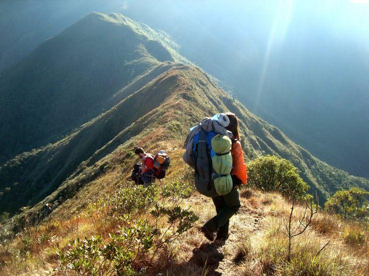 trekking in Serra Fina - border of Minas Gerais, Rio de Janeiro and São Paulo