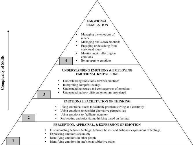 Emotional regulation. 4 levels of emotional regulation.