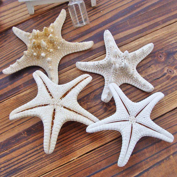 Natural crafts white starfish, fashion home decorative handicrafts,shell Mediterranean 5pcs / lot free shipping