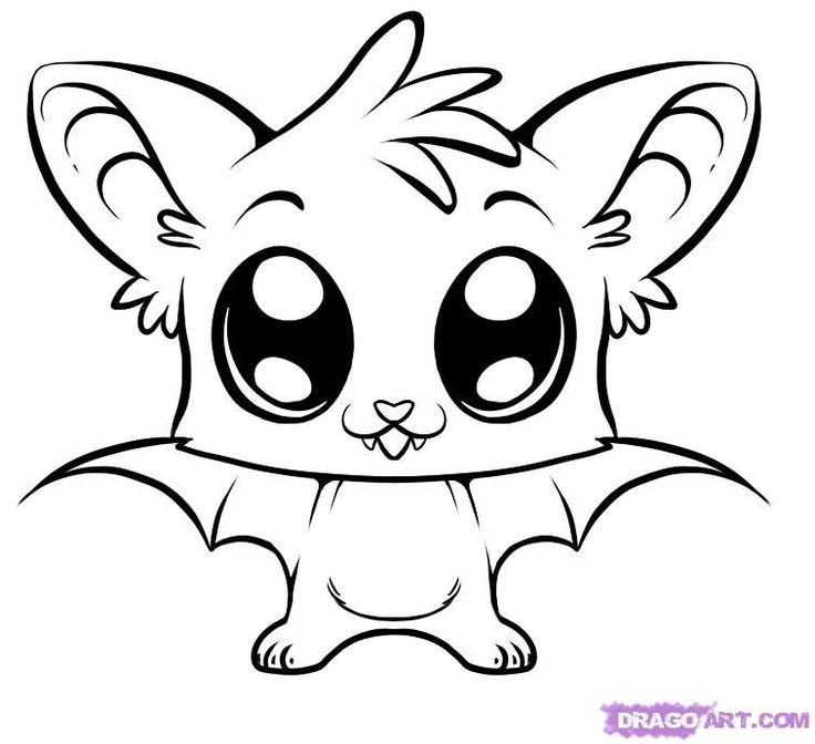 cute coloring pages | how to draw a cute bat step 6