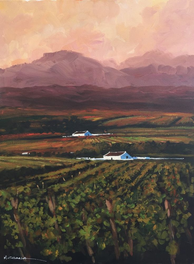 Mauro Chiarla - Cape Winelands at Sunset