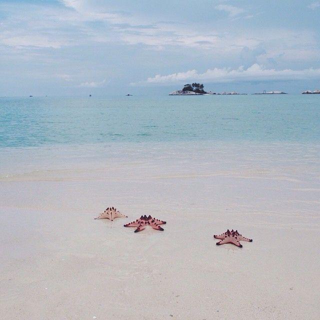 Ada 3 patrick.  . Pulau pasir, #Belitung. . #travel #indonesia