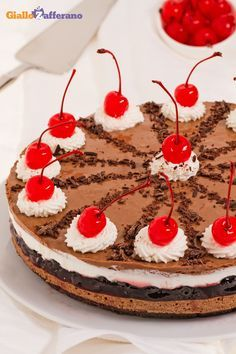 #CHEESECAKE FORESTA NERA (black forest cheesecake) è una scenografica torta fresca con #amerene, #cioccolato e #panna, ispirata alla classica versione nord europea. Diversi strati di bontà stupiranno anche gli ospiti più esigenti! #ricetta #GialloZafferano #dolce