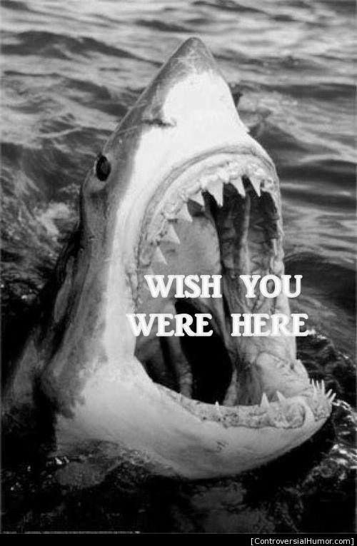 how I wish, how I wish