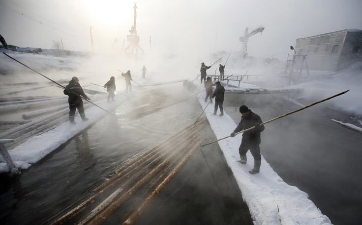Employees sort logs on the Yenisei River at the Novoyeniseisk wood processing plant, in the town of Lesosibirsk, some 300 km (186 miles) north of the Siberian city of Krasnoyarsk.  The taiga, also known as the boreal forest, on the coast of the Angara River is one of the main areas for the industrial cutting of wood thanks to the high quality of the Angara pine. Open air work continues all year around regardless of temperatures which can drop to minus 45 degrees Celsius.